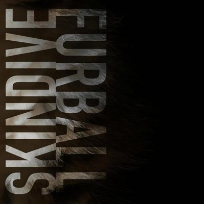 Skindive - Furball Single Artwork